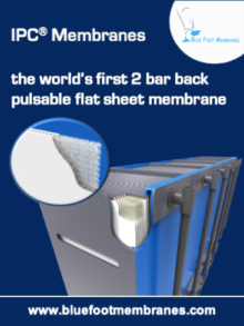Blue Foot Membranes