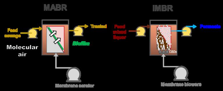 Schematics: MABR vs iMBR