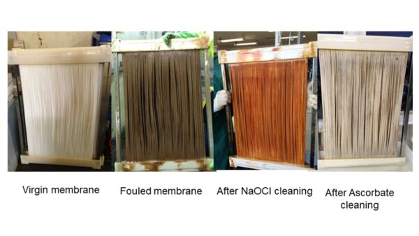 Impact of different cleaning reagents