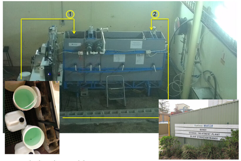 Figure 5b.  Pilot plant, photo | Feat Ferric And Ferrous Fig 5B