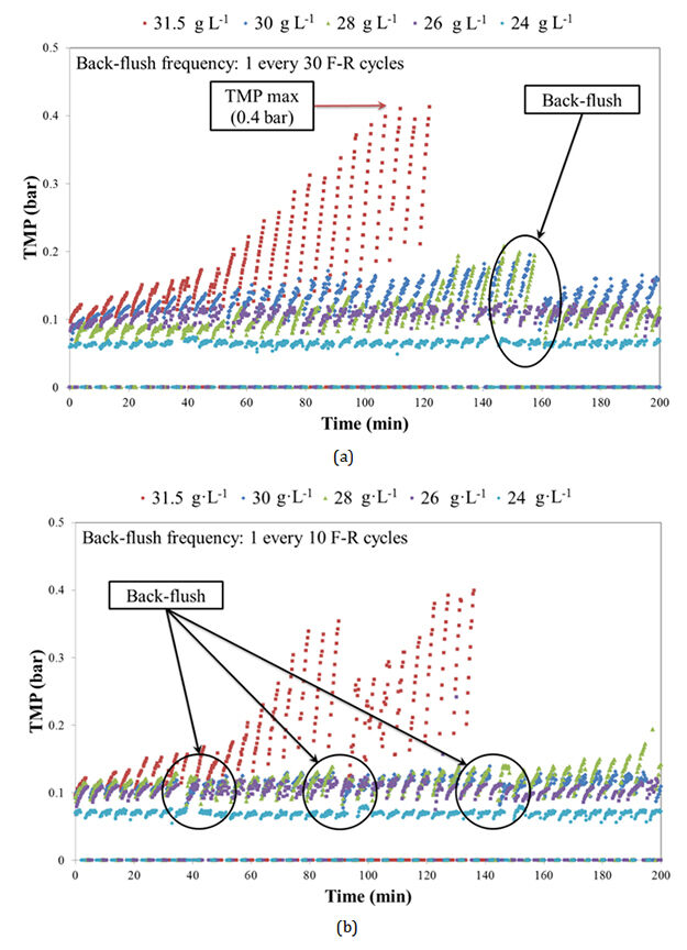 Figure 4.  TMP evolution for different MLTS concentrations for a back-flush frequency of: (a) 1 back-flush every 30 F−R cycles; and (b) 1 back-flush every 10 F−R cycles | Feat Immersed Anaerobic Mbrs Fig 4