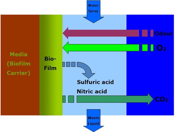 Figure 8. Biofiltration ventilation system | Feat Kunming Fig 8