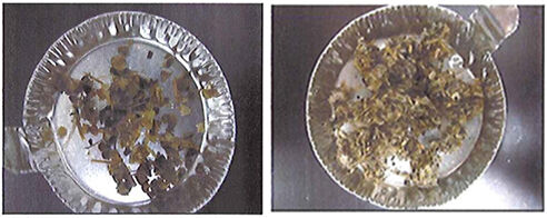 Figure 4.  Example of collection: 2.0 mm sieve (left); Example of collection: 1.0 mm sieve (right) | Feat Mbr Screening Part 2 Materials 3