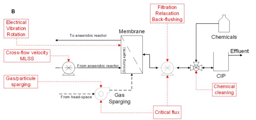 Figure 2. Main variables used in AnMBR technology for controlling: A) the biological process, and B) the filtration process | Feature anmbr process control fig 2b