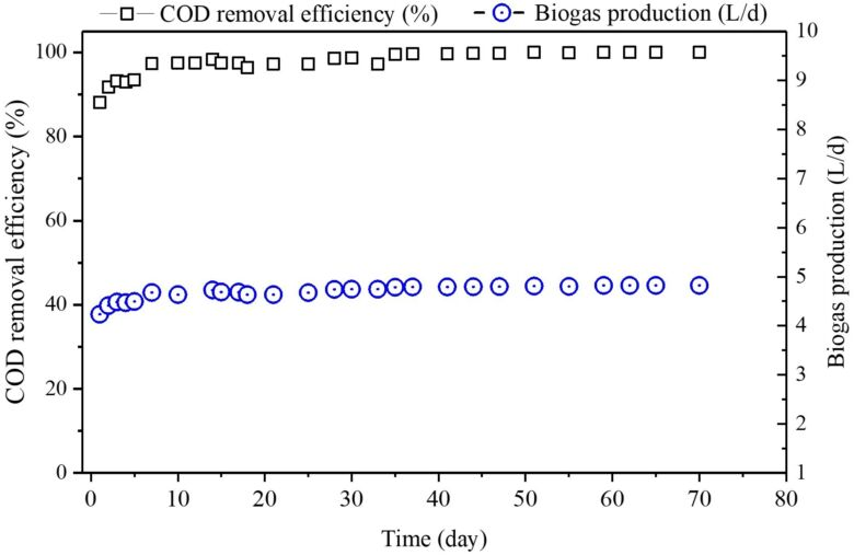 Figure 2.  COD removal efficiency biogas production (L/d) from the AnMBR | Feature an MBR MCT fig 2