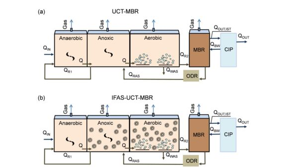 Figure 2:	Configurations of the MBR and IFAS-MBR plants based on the University of Cape Town (UCT) process