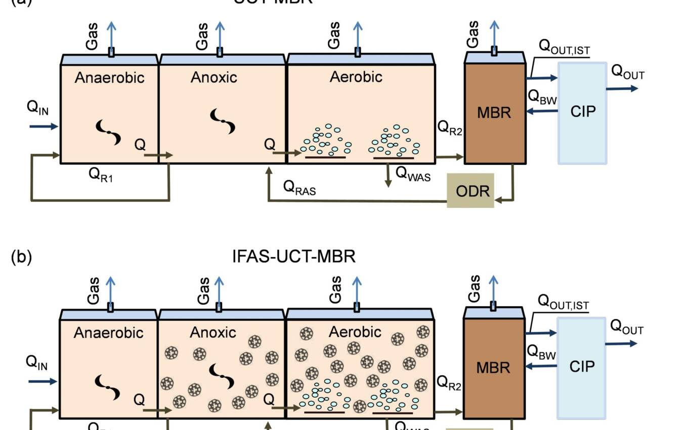 Figure 2:Configurations of the MBR and IFAS-MBR plants based on the University of Cape Town (UCT) process