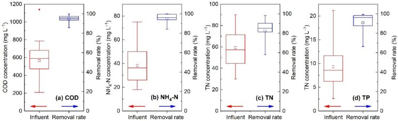 Fig. 6.  Reported treatment performance from published literature of typical full-scale MBRs in removing (a) COD, (b) NH4+-N, (c) TN, and (d) TP | Feat Chinese Experience Fig 6