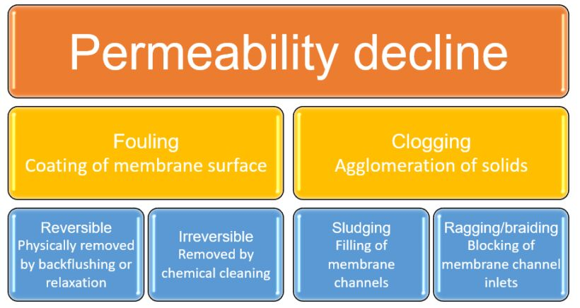 Figure 1.  Permeability decline in MBRs − fouling and clogging | About Mbrs Simon Judd Fouling Clogging Cleaning