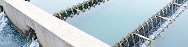 Shutterstock 165809348