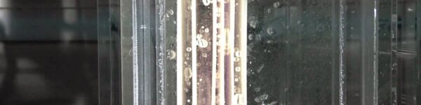 Image of a Toray module with bubbles