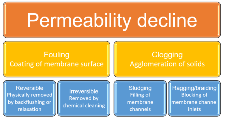 Figure 1.  Permeability decline phenomena | About Mbrs Simon Judd Fouling Clogging Cleaning