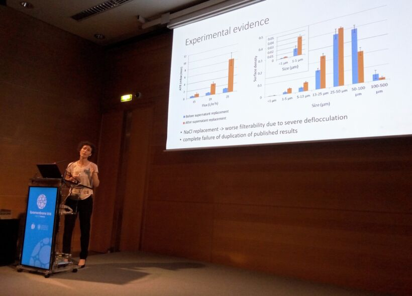 Figure 4:  Ilse Smets of KU Leuven discussed the effect or otherwise of osmotic pressure on membrane fouling | News July 2018 Euromembrane Ilse Smets