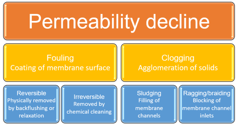 Graphic to illustrate 'Permeability decline in MBRs − fouling and clogging'. Fouling is split into Reversible and Irreversible fouling. Clogging is split into Sludging and Ragging/braiding.