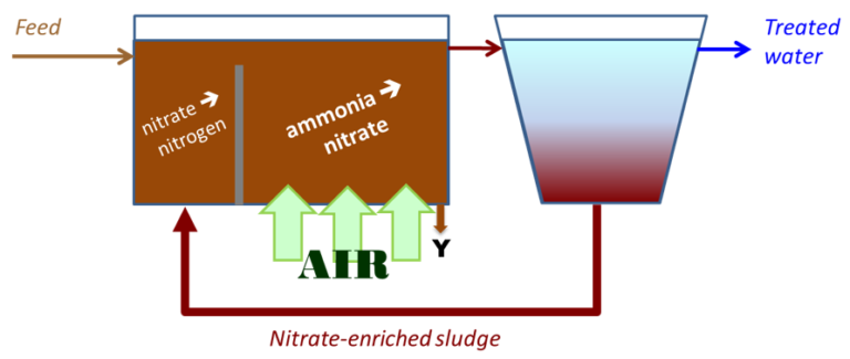 A graphic to illustrate N removal by the Modified Ludzack−Ettinger process