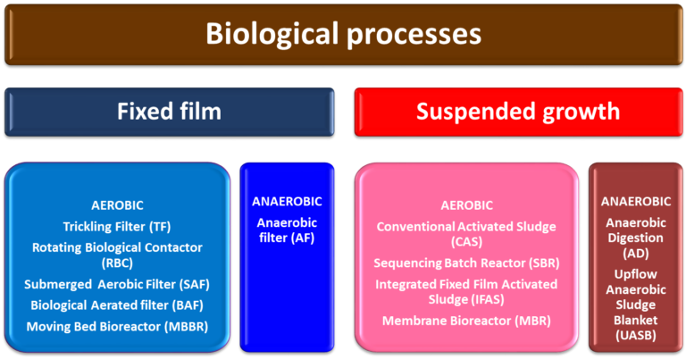 A graphic to show the biological processes in an MBR: fixed film vs suspended growth, and all subsections.